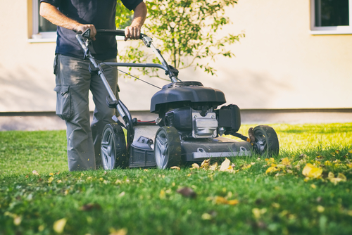 vary-the-mowing-pattern
