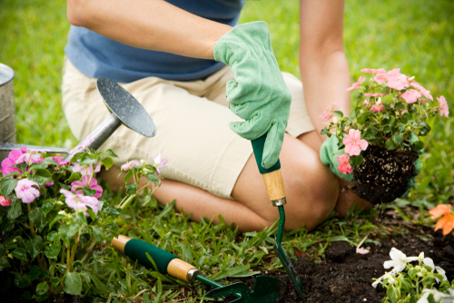 Why A Beautiful Garden Will Make You Happier