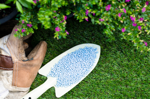 What Does a Landscaping Company Do?